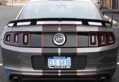 Mustang Stripes2